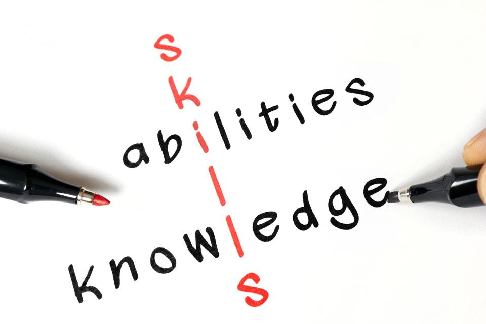 skillsabilities960.jpg